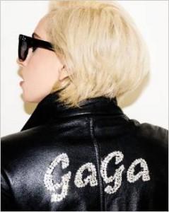 Lady Gaga Lady Gaga Book