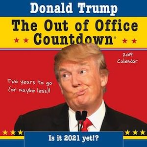 2019 Donald Trump Countdown Wall Calendar