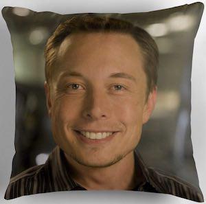 Elon Musk Pillow