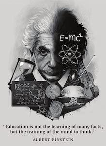 Albert Einstein Training To Think Poster